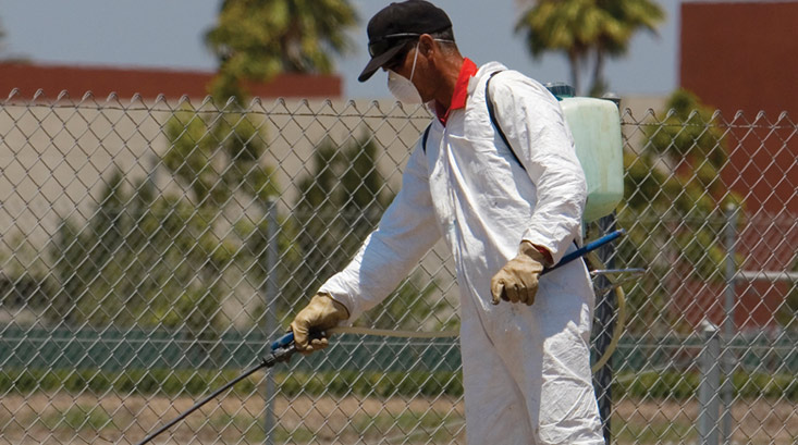 cave creek pest control